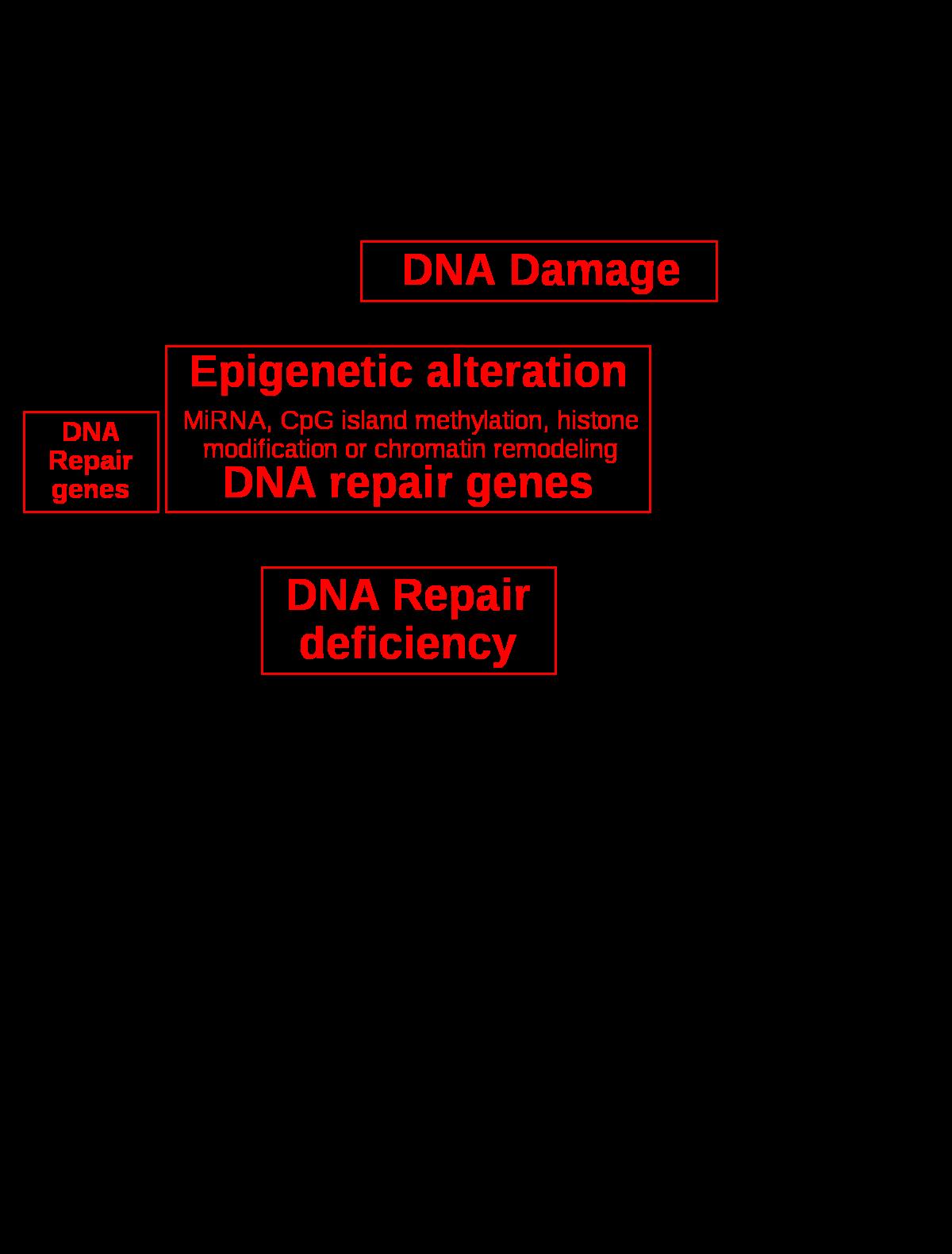 genetikai rákos elváltozások