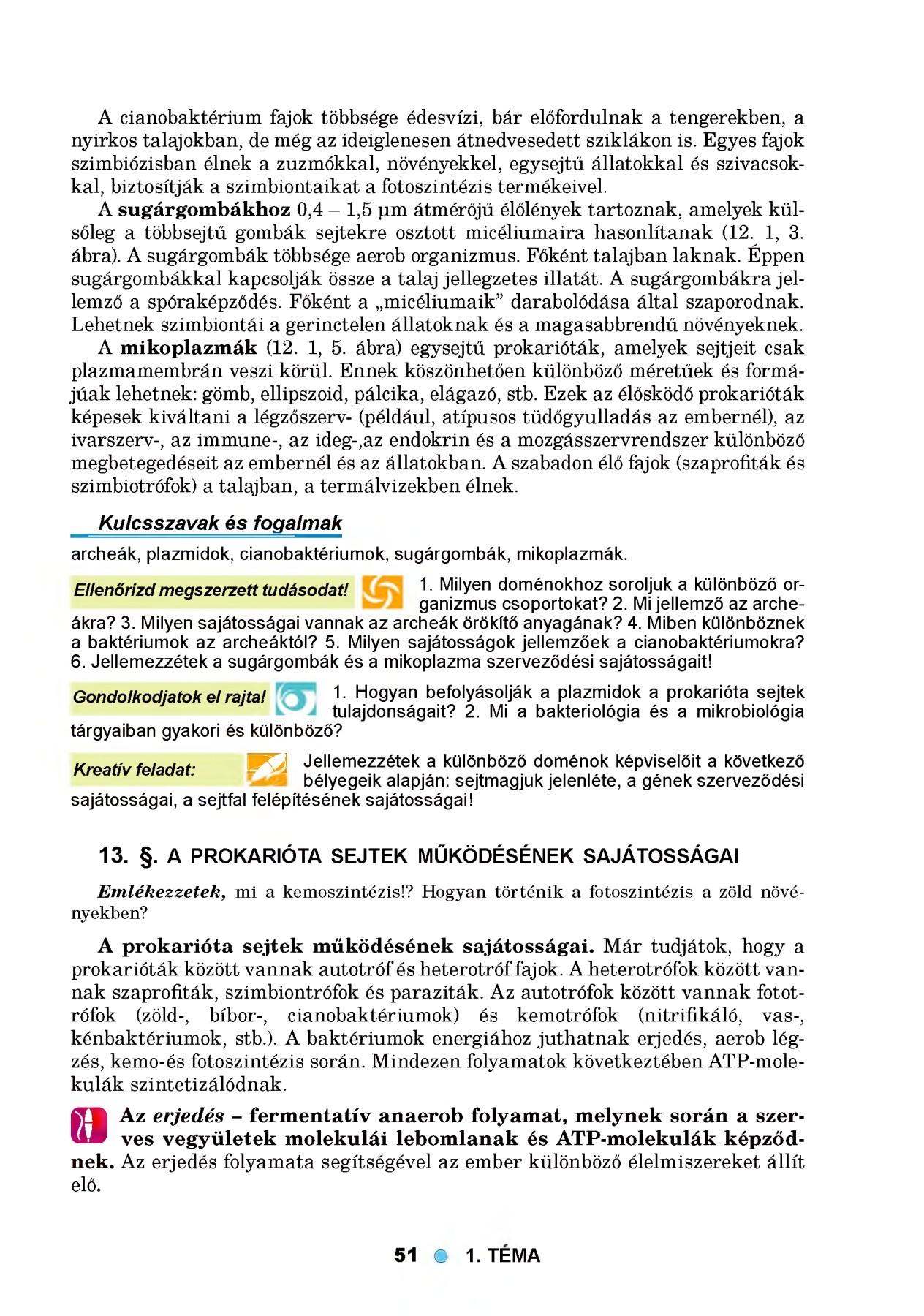 Gyógymód a parazita testének megtisztítására, A paraziták elleni gyógyszerek típusai