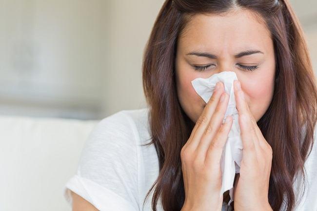 papilloma hidung adalah