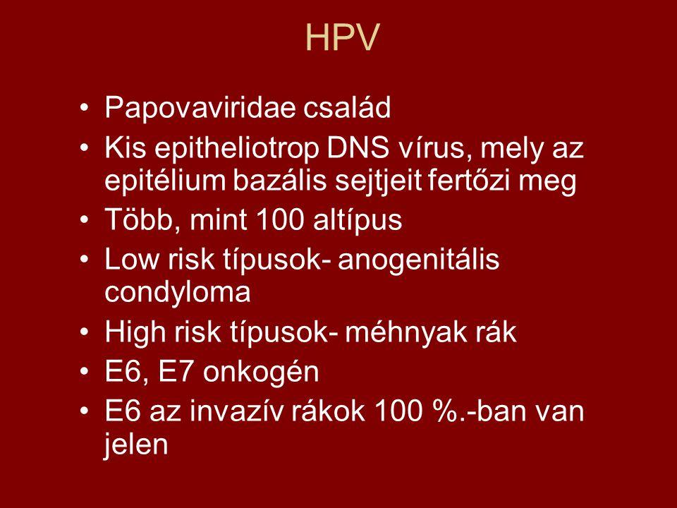 HPV: válaszok laikus kérdésekre Hpv vírus és normális pap