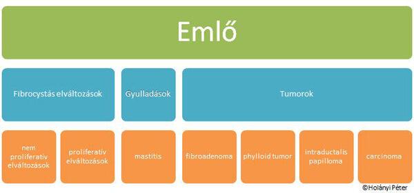 mi az intraductalis papilloma