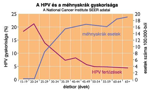 humán papilloma vírus halálozási aránya