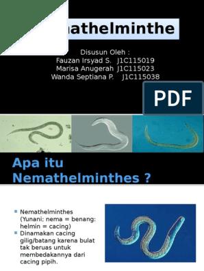 Kenet az enterobiosishoz. Hogyan történik az enterobiosis és a bélféreg tojás elemzése?