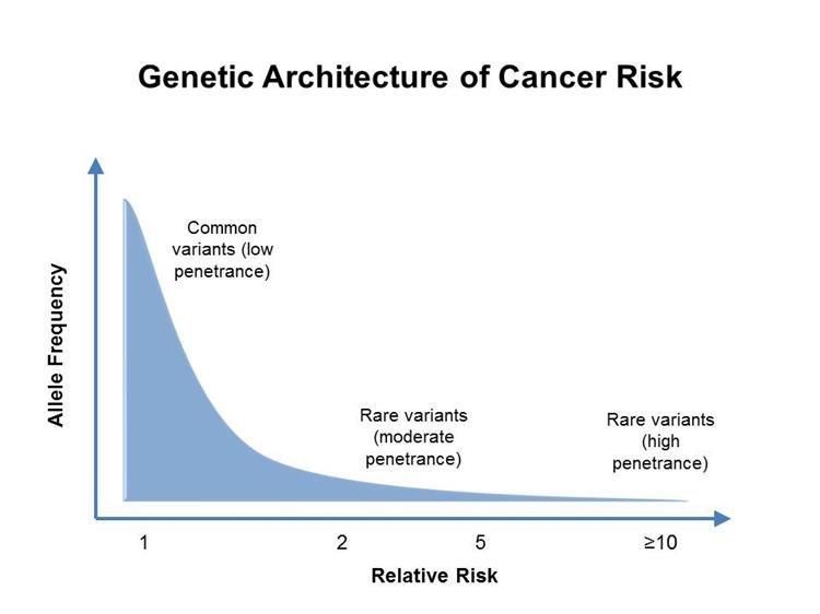genetikai rák vagy sem