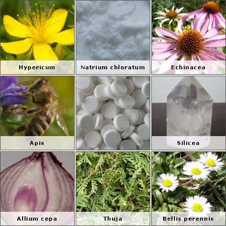 Nehézfém-kivezetés és allergia vizsgálat | Napfényes Gyógyközpont