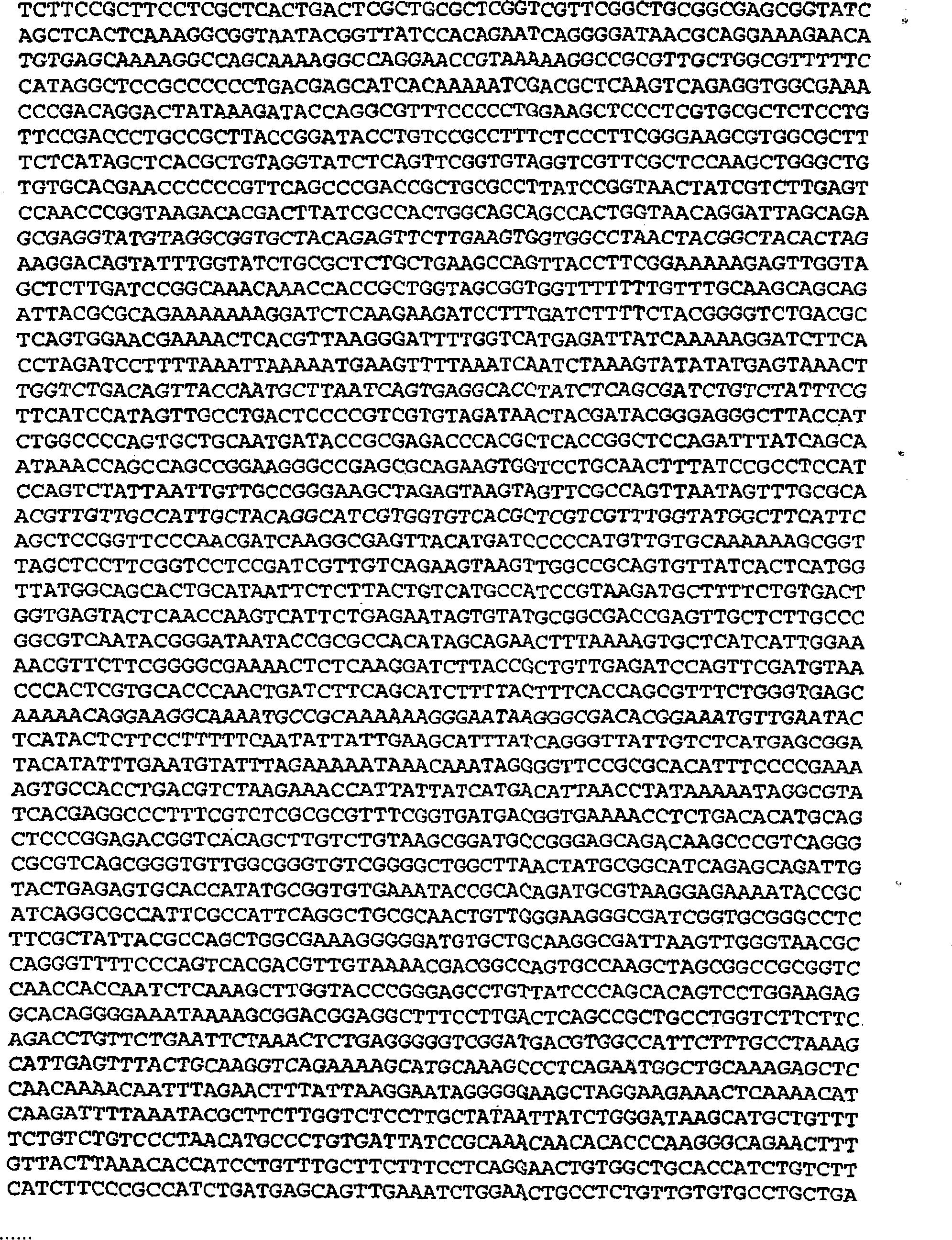 paraziták beraria h