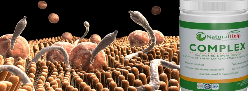 Napi paraziták, FitoTree parazita és gombaölő kapszula 60 db