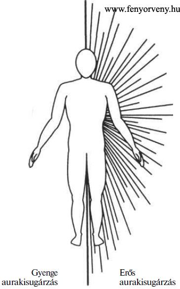 Mi az antihelmintikus tisztítás - Trichocephalosis aura