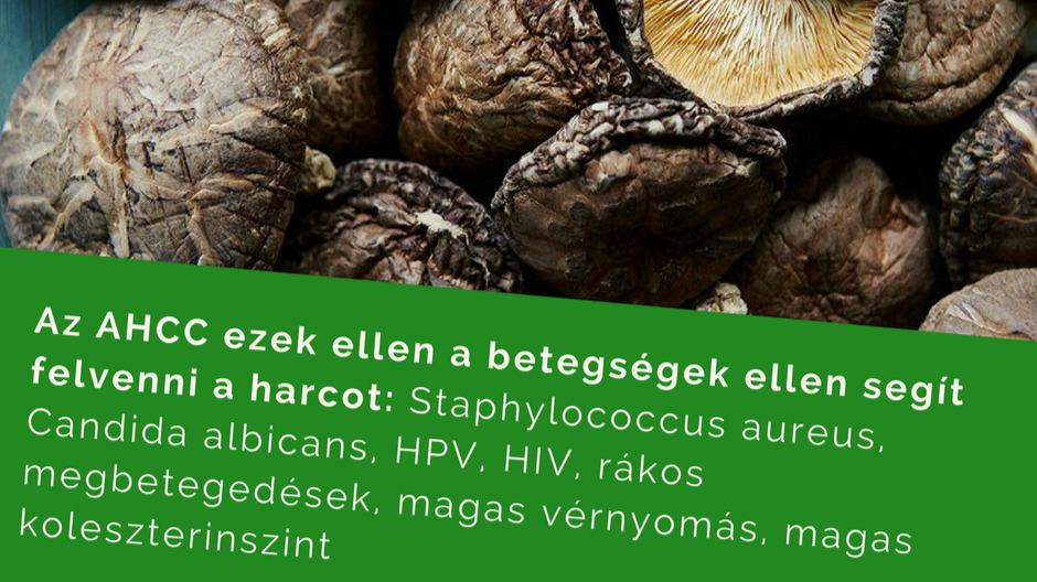 óvszeres papillomavírus