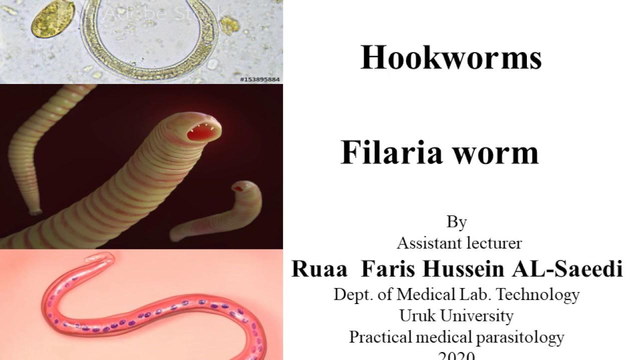 pinworm paraziták emberben)