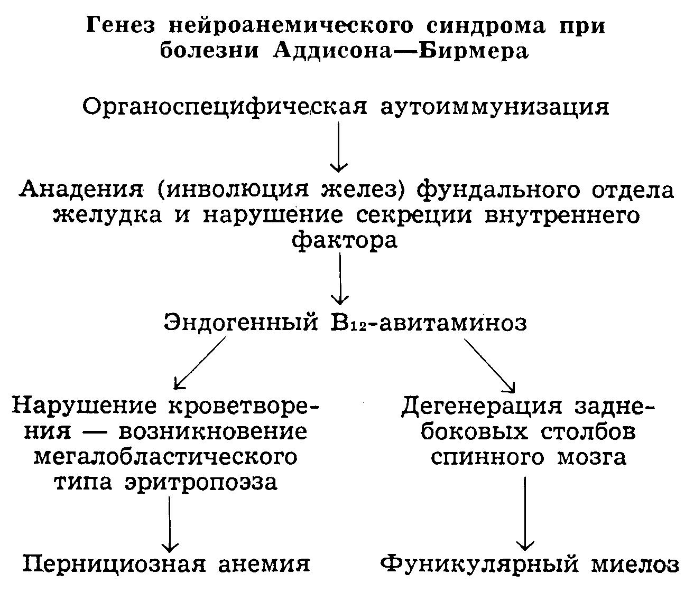 neem féreghajtó