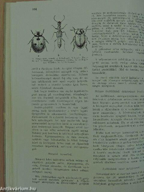 az álparaziták meghatározása)