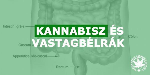 vastagbélrák könyv féreghajtó gyógyszer a teniosis kezelésére