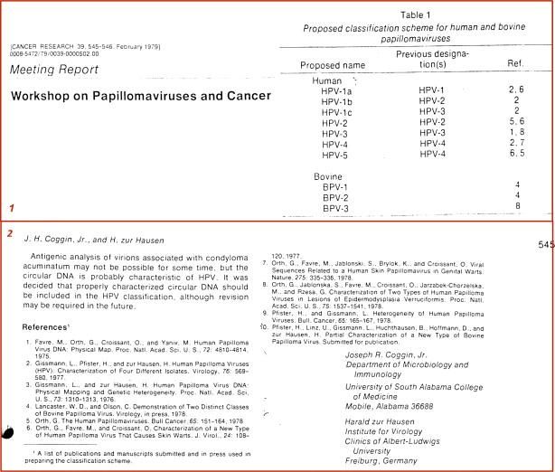 gpc papillomavírus