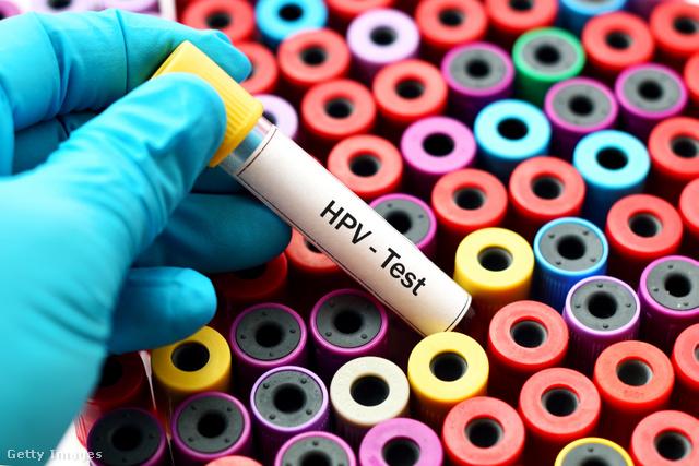 hpv kezelés és megelőzés)