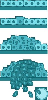 kóros sejtek hpv kezelése