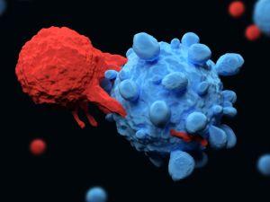 a rák öröklődhet