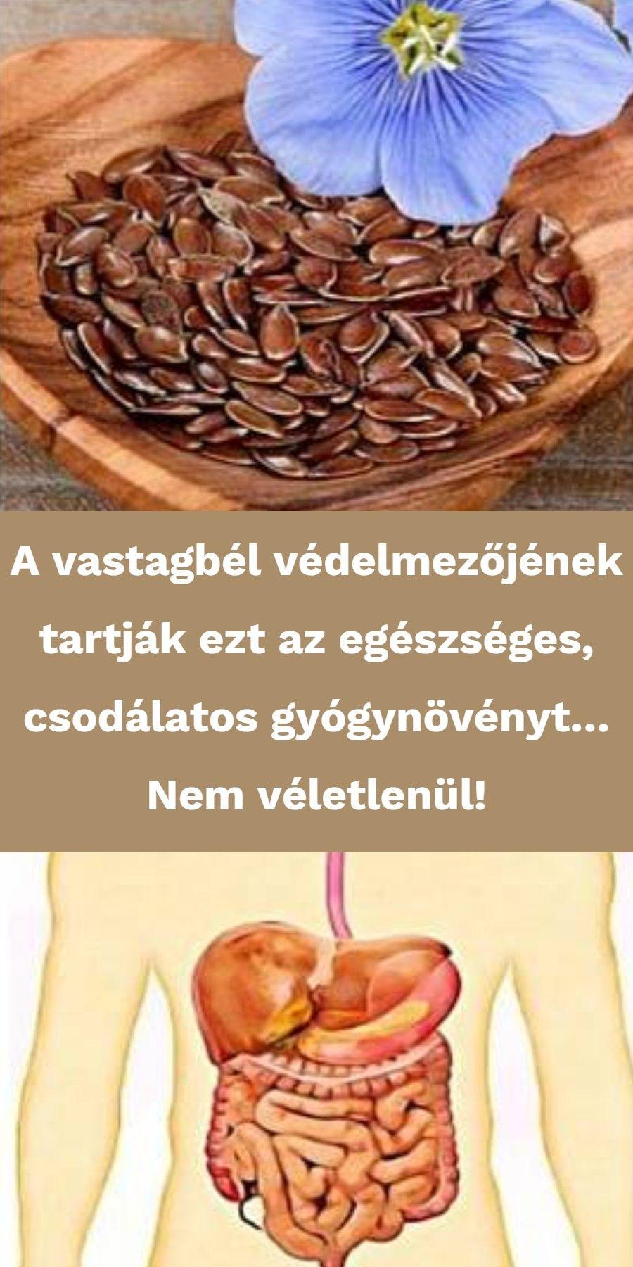 természetes gyógyszerek a vastagbél tisztítására)