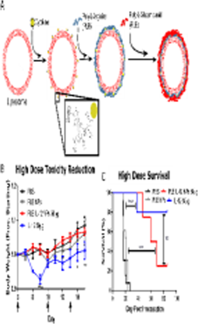 OTSZ Online - A leheletből tömeg-spektrométerrel kimutatható fej-nyaki laphámrák