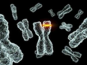 genetikai rák oka