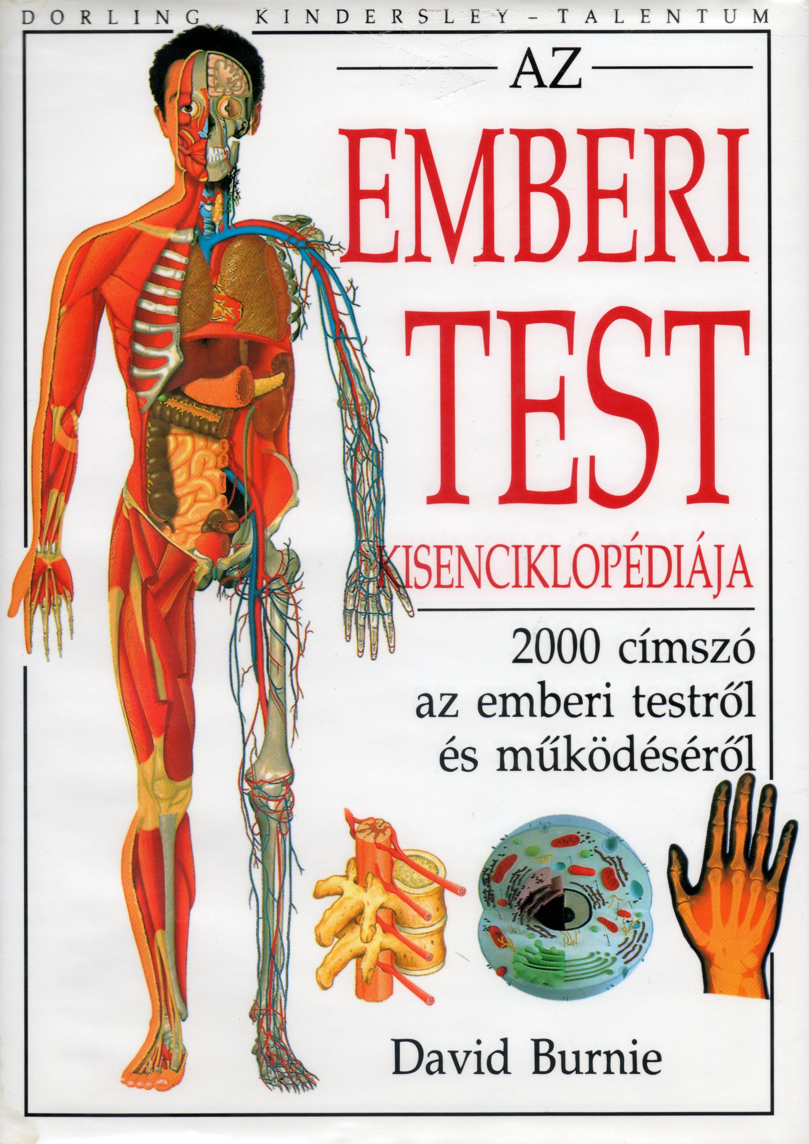Paraziták a szék képein, Enterobiosis parazita életciklusa. Milyen szék, ha vannak férgek