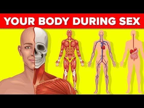 Az emberi test parazitáinak gyógyszerei. Parazita a testben - Egészség | Femina