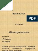 revai09.pdf
