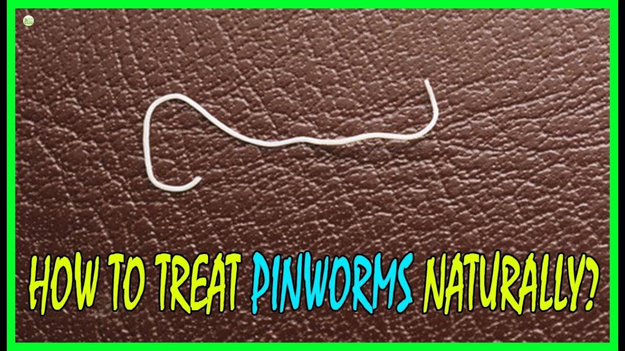 pinworms húgyban