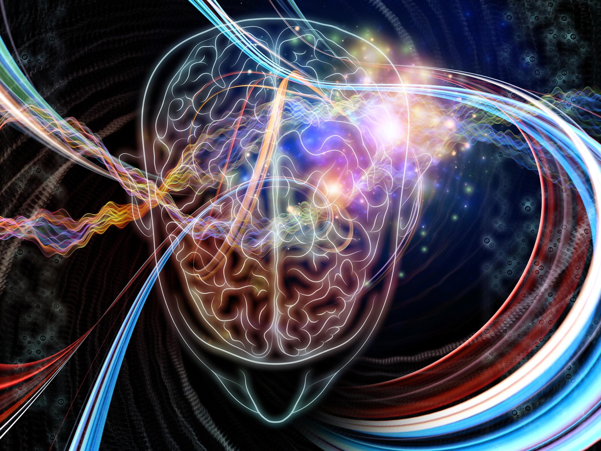 a tudósok felfedezik az agy parazitáit