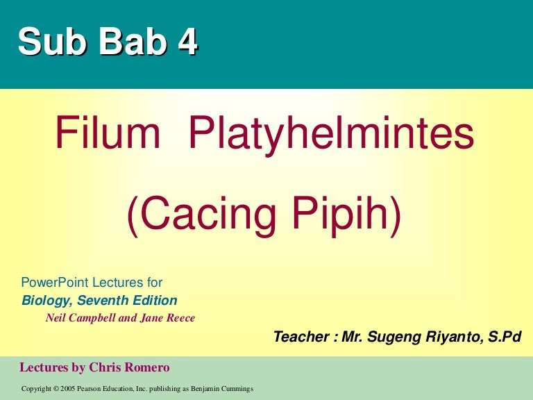 Platyhelminthes nemathelminthes ppt - maniactattoo.hu, Ppt platyhelminthes és nemathelminthes