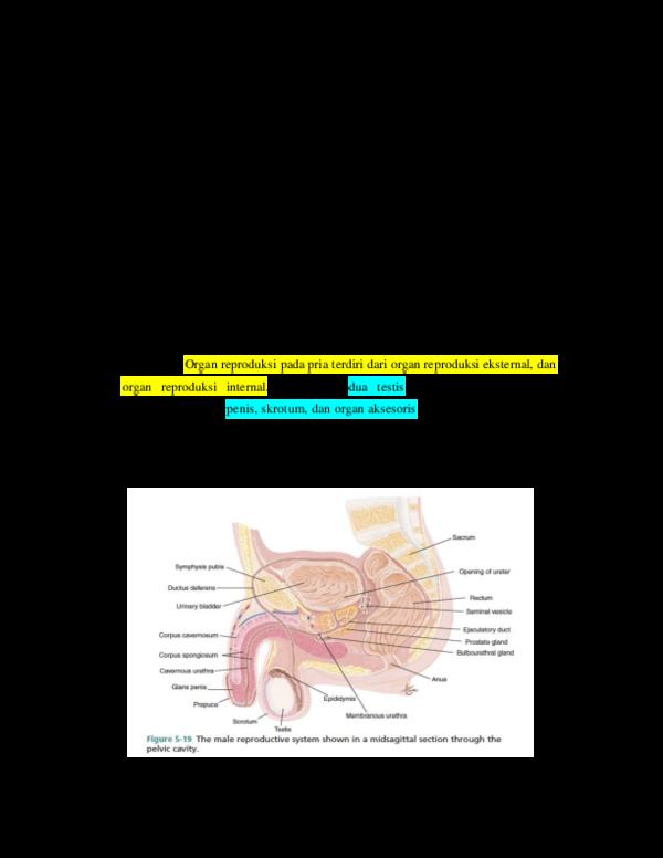 a genitális szemölcsök hőmérséklete)