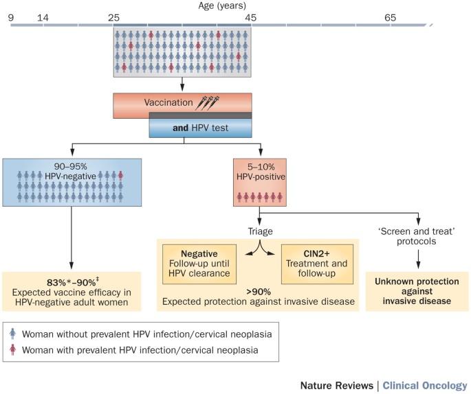 Tájékoztató a HPV-ről!