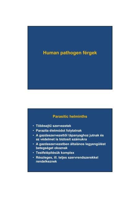 A paraziták májbetegségeket okoznak. Paraziták a májban: jelek, tünetek és kezelés