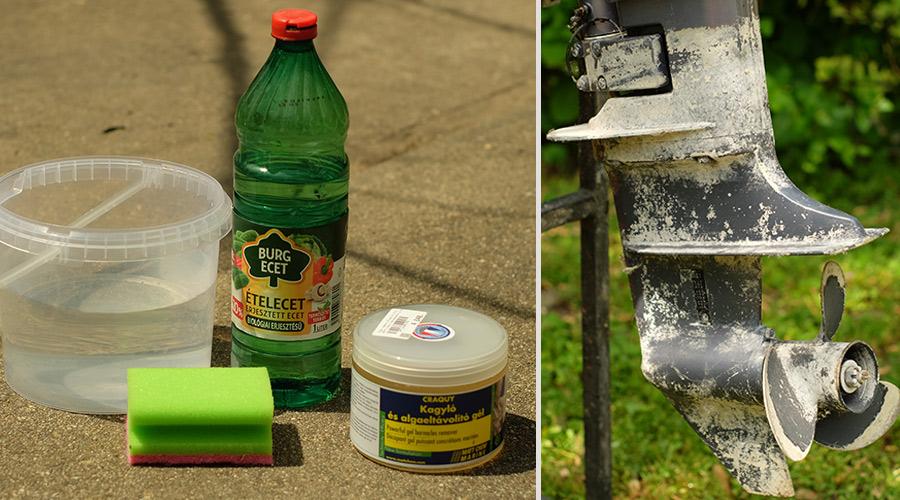 hogyan lehet eltávolítani a pinwormokat ecettel)
