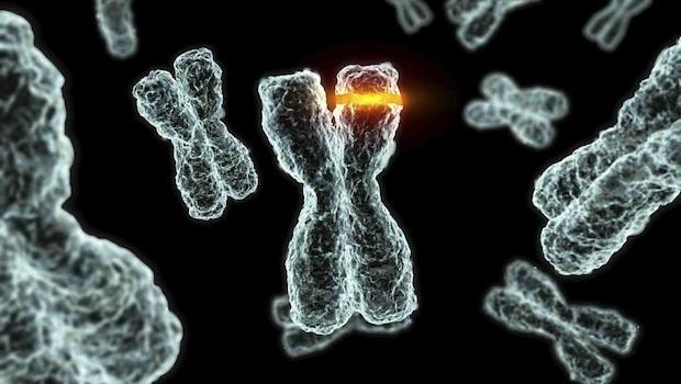 genetikai rákos elváltozások)