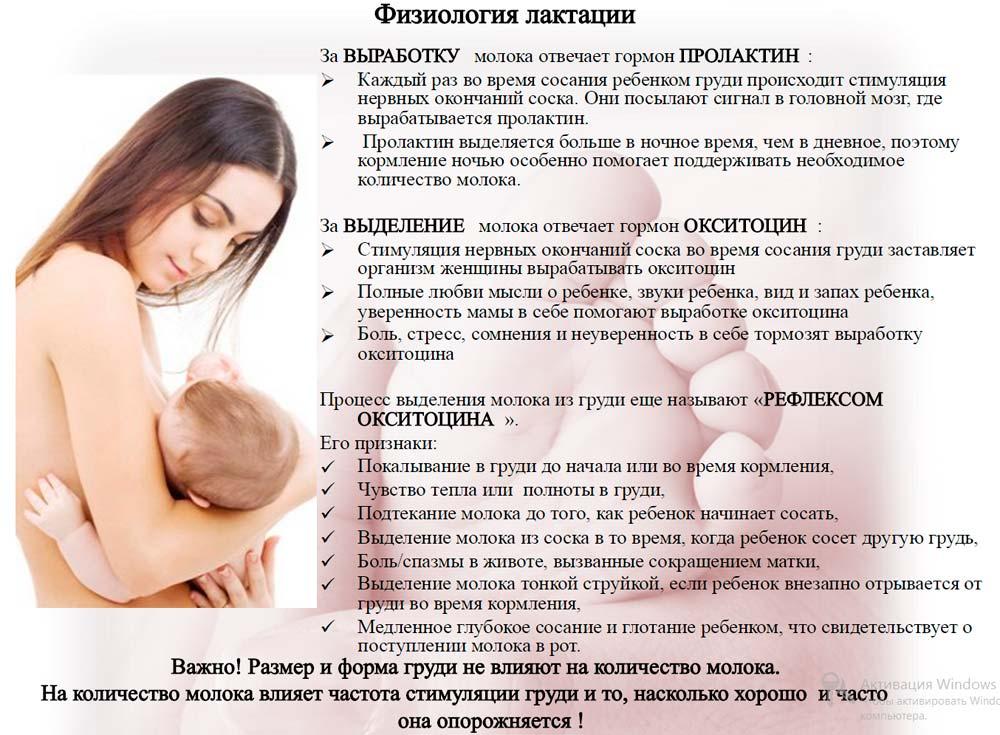 Férgek kezelése szoptató anyáknál