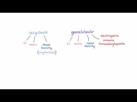 mik az endofita szemölcsök)