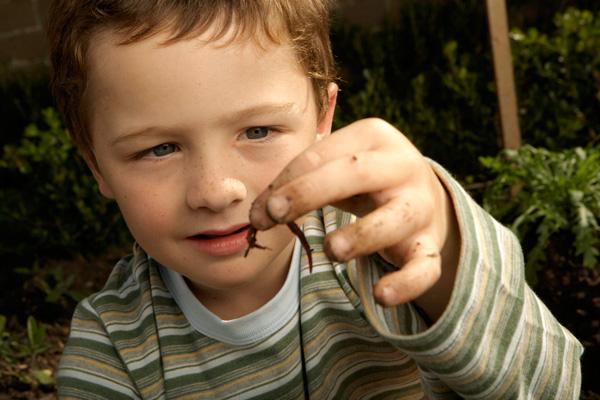 férgek a gyermekkori tünetek székletében