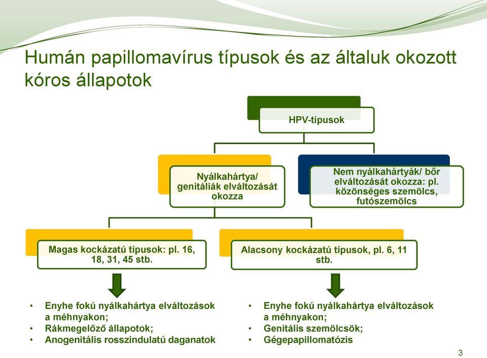 hpv magas kockázatú cin 1