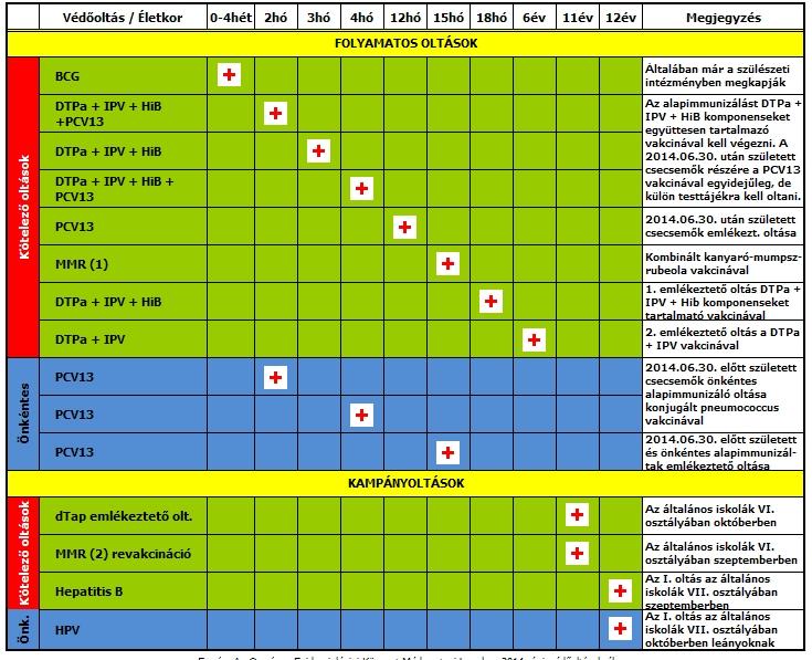 papillomavírus vakcina naptár