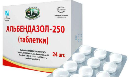 Enterobiosis megelőző gyógyszerek mi ez, Enterobiasis (pinworms)