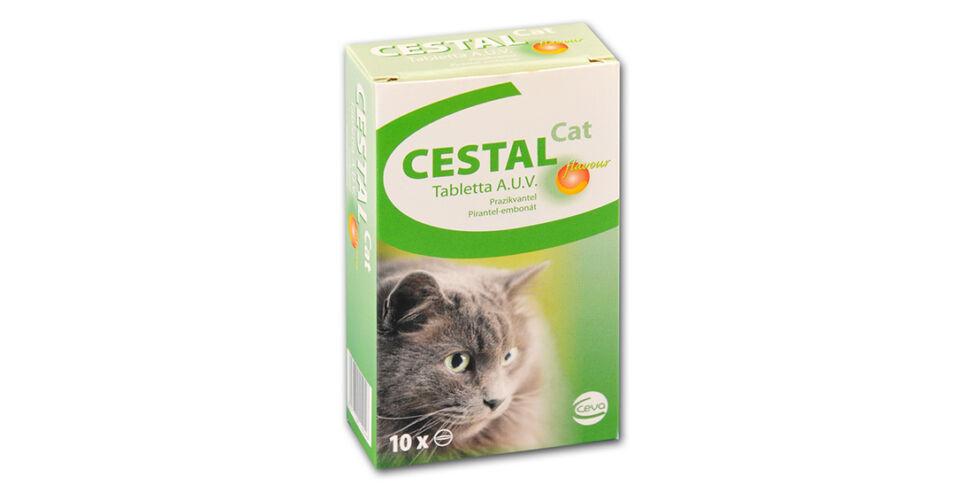 Féreghajto tabletta embereknek, Drontal Cat féreghajtó tabletta 2db