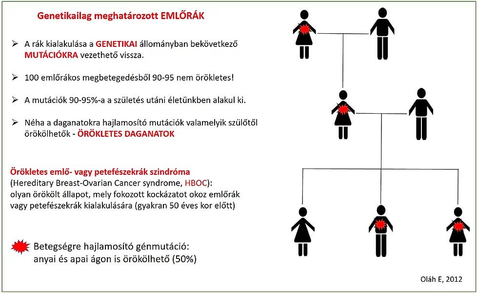 rák genetikai készlet
