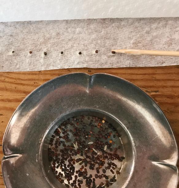 hogyan lehet levezetni magukat a papillómákat