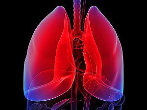 hpv tüdőrák kezelése hpv szemölcsök vérzik