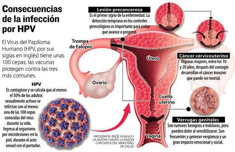 Szenior Akadémia – fókuszban a vírus eredetű daganatok – Semmelweis Hírek