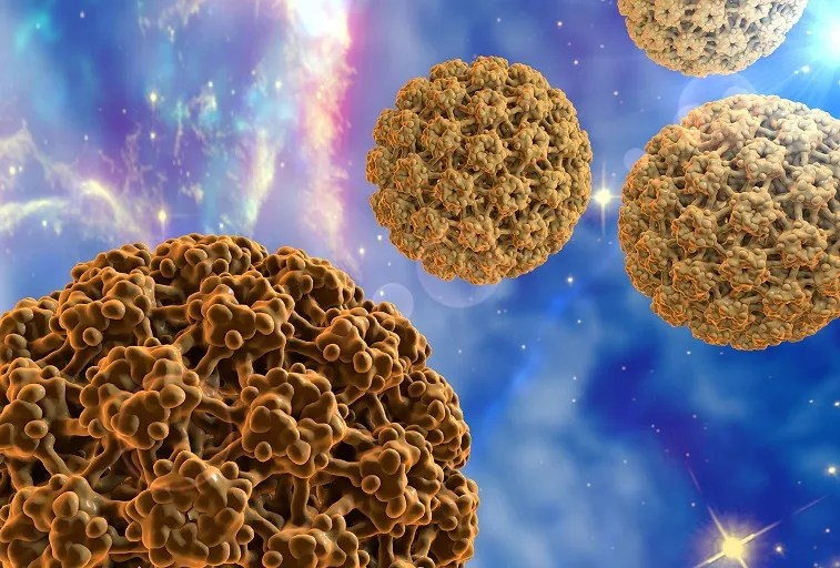 méregtelenítő vastagbél tünetei a protozoon paraziták gyógyítása