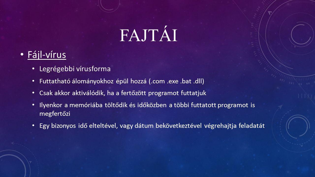 számítógépes vírusok meghatározása)