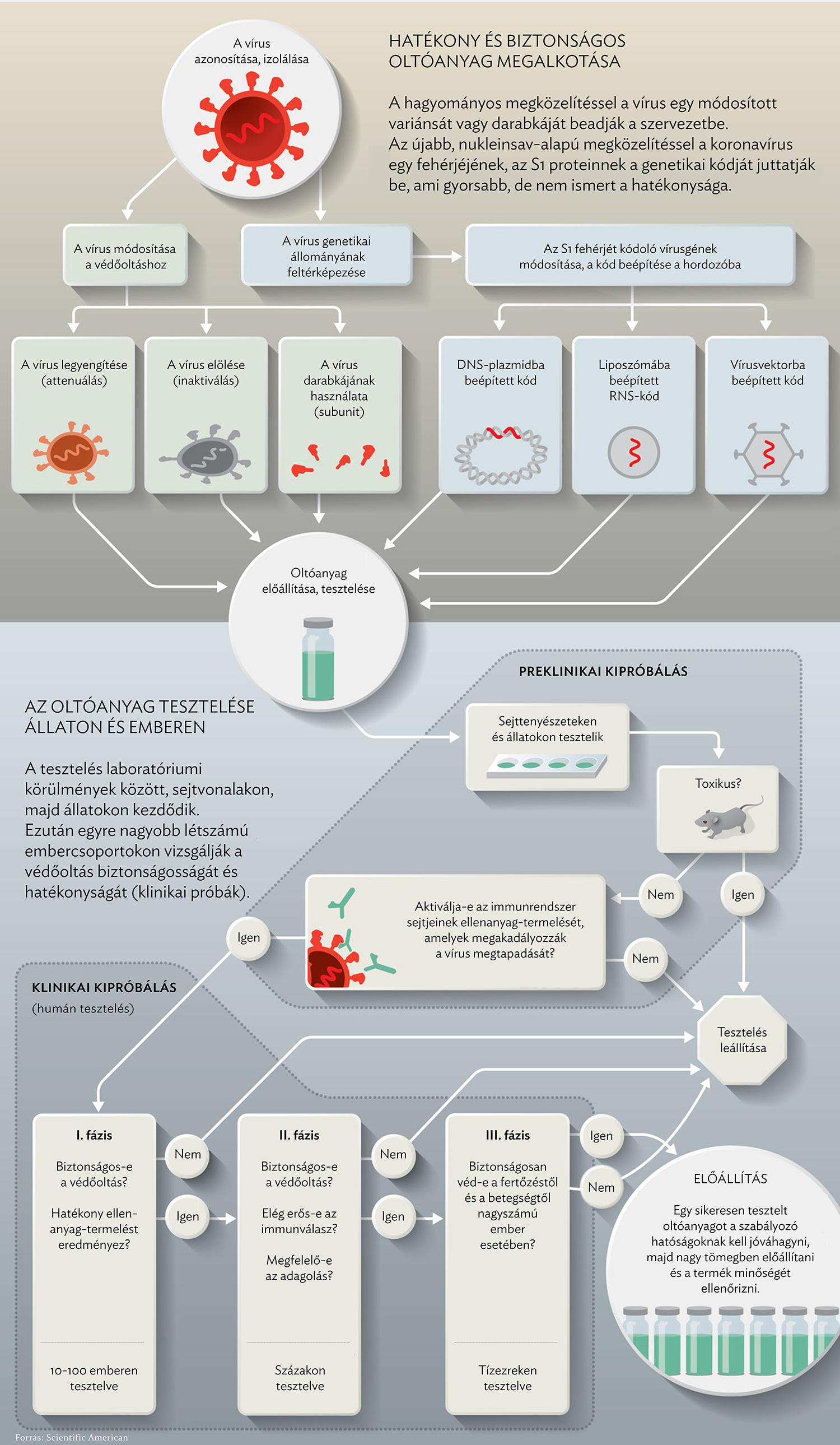 papilloma láz vírus elleni vakcina)
