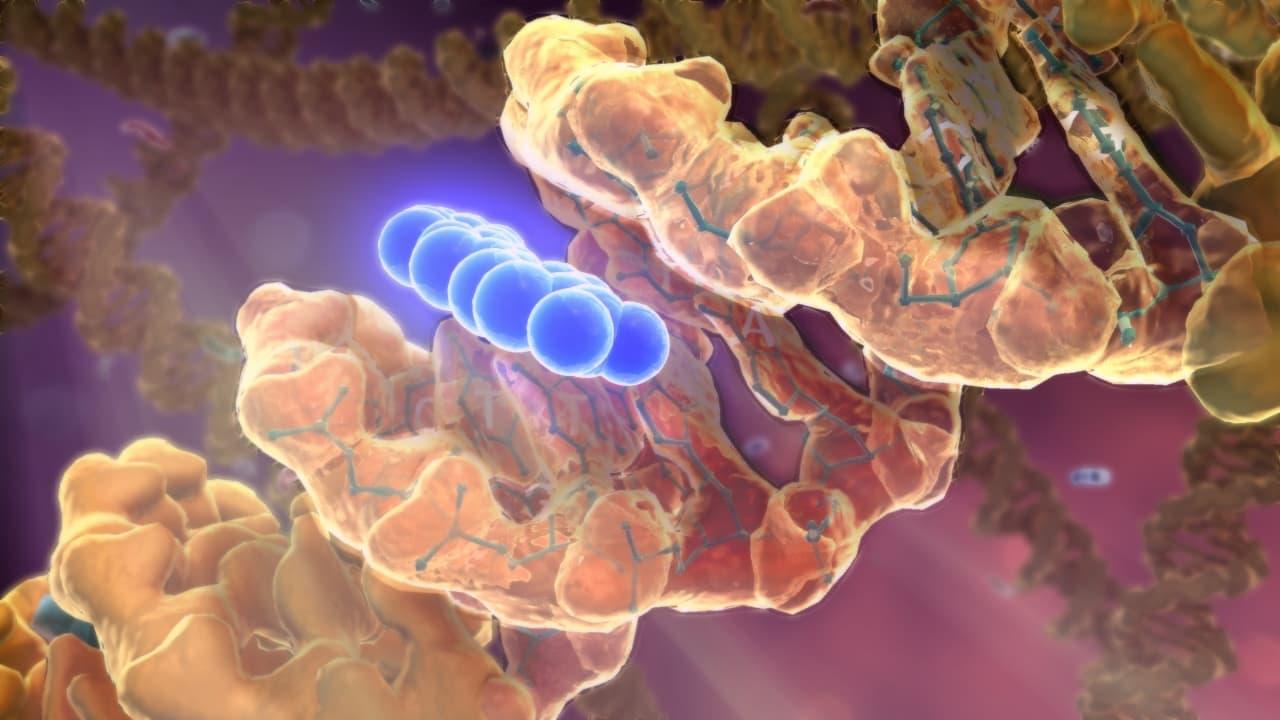 Örökölhető a rák? Örökségből ritkán lesz daganat